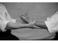 Aikido communication